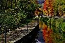 Puente-paisaje-en-otoño