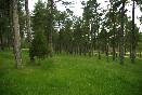 Camping-cuenca-4