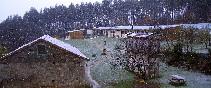Alvarella-nieve