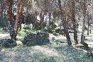 Zona-de-acampada-ii