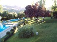 Jardín y piscina (1)