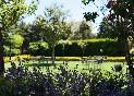 Jardin-de-la-vieja-bodega