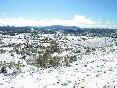 Nieve inazares