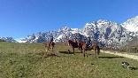 Paseo a caballo por los puertos de viñón