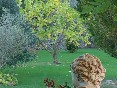 Jardín (2)