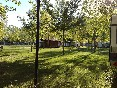 Verano (5)