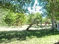 Verano (11)