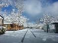 En invierno (1)
