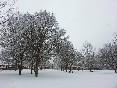 En invierno (3)