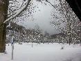 En invierno (5)
