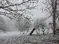 En invierno (6)