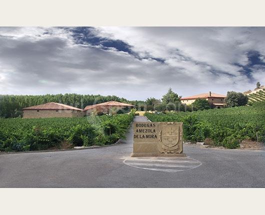 La bodega está rodeada por los viñedos al más puro estilo de château francés