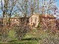 El molino (1)
