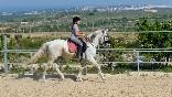 Lo-rufete-caballos