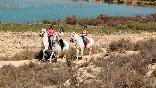 Lo-rufete-caballos-rutas