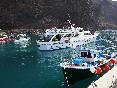 Barco y equipo (14)