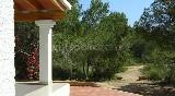 terraza de Es Pinar