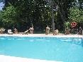 Cortijo-los-monteros-piscina-