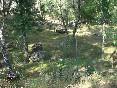 Valle de iruelas 07