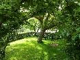 El-nogal-jardín