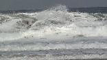Surf camps (6)
