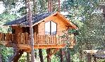 El-xalet-de-prades-cabaña-madera