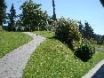 Jardín con césped natural