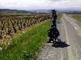 Iberocycle ii