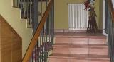 roch-hotel-escaleras