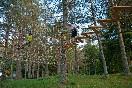 actividades entre árboles