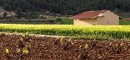 Valle del Aceniche