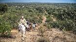 Rutas a caballo foto 5