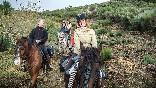 Rutas a caballo foto 9