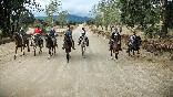 Rutas a caballo foto 12