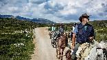 Rutas a caballo foto 15