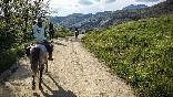 Rutas a caballo foto 34