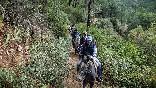 Rutas a caballo foto 36
