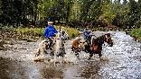 Rutas a caballo foto 2