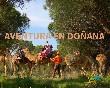 Aventura Doñana