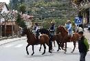 caballos_