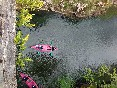 Aqua-21-aventura-canoa-desde-arriba