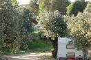 Caravana-entre-olivers-al-camping-terra-alta-primavera-700x466