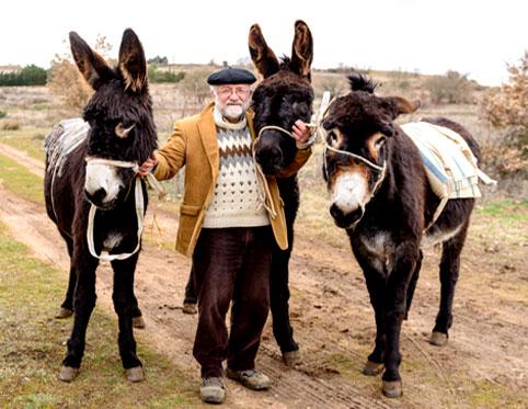 Imagen de José Ignacio,                                         propietario de Paseando con burros