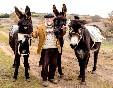 Paseos-con-burros-madrigalejo-del-monte