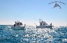 Actividades pesca (1)
