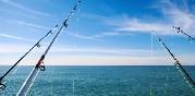 Actividades pesca (13)