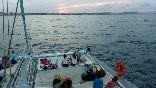 Excursiones en barco (14)