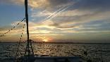Excursiones en barco (17)