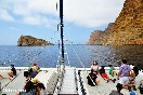 Excursiones en barco (24)