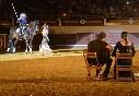 Baile-flamenco-con-caballos